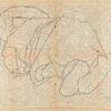 Untitled from Burders Series, 2016, Pencil on Burda Pattern Paper, 57x86 cm8